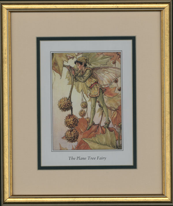 Framed small Flower Fairy print. Plane Tree Fairy.