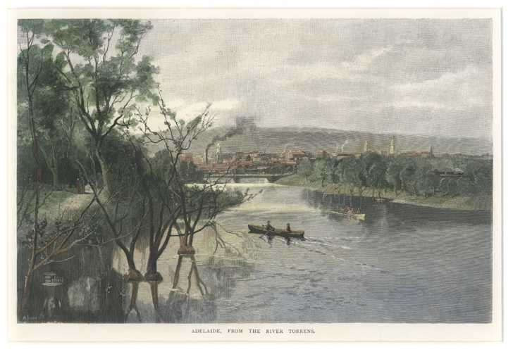 S.A. Adelaide, from the River Torrens. Antique print c1886.
