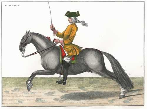 "18thC Perfect Modern Horse Management 4. ""The Aimiable"""