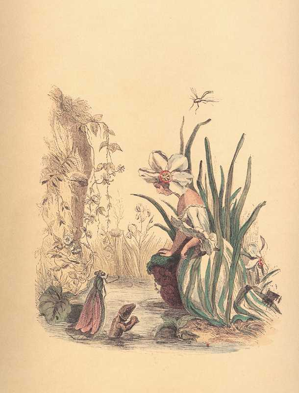 Narcissus Flower Lady with dragonfly & salamander water lizard. Grandville