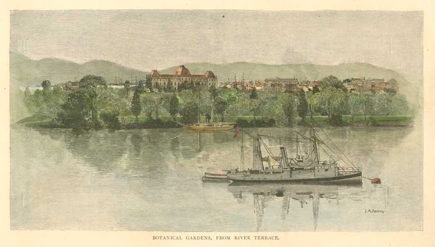 Brisbane Botanical Gardens from River Terrace. JR Ashton engraving c1886.