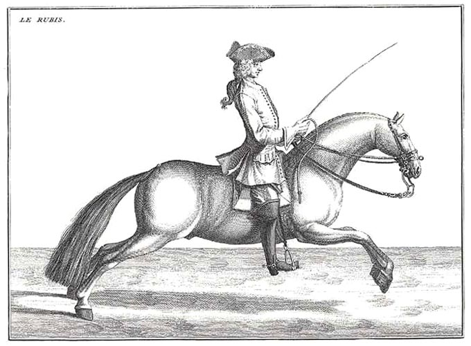 "Art of Horsemanship ""Le Rubis"" position by Baron d'Eisenberg"