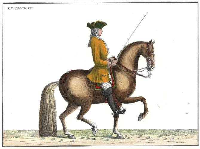 "18thC Perfect Modern Horse Management 3. ""The Diligent"""