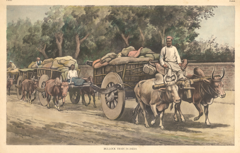 Bullock Train in India.  Wonderful historic Indian scene c1890