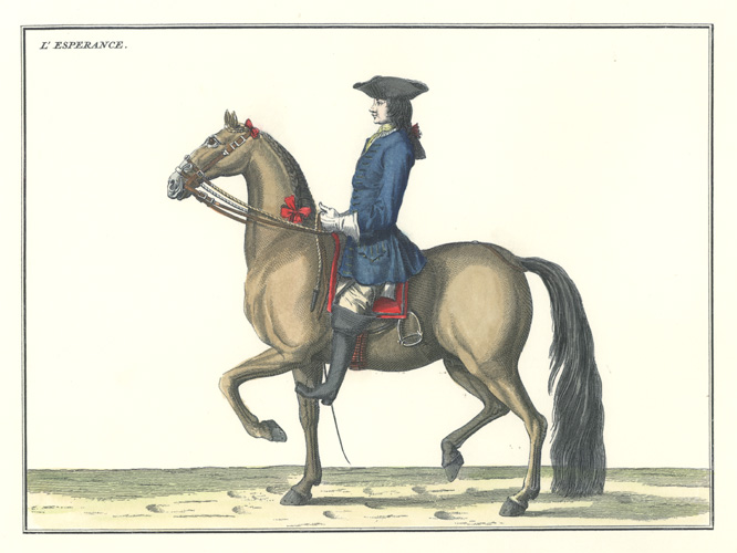 "18th century dressage illustration. ""L Esperance"". Eisenberg Horse Management."