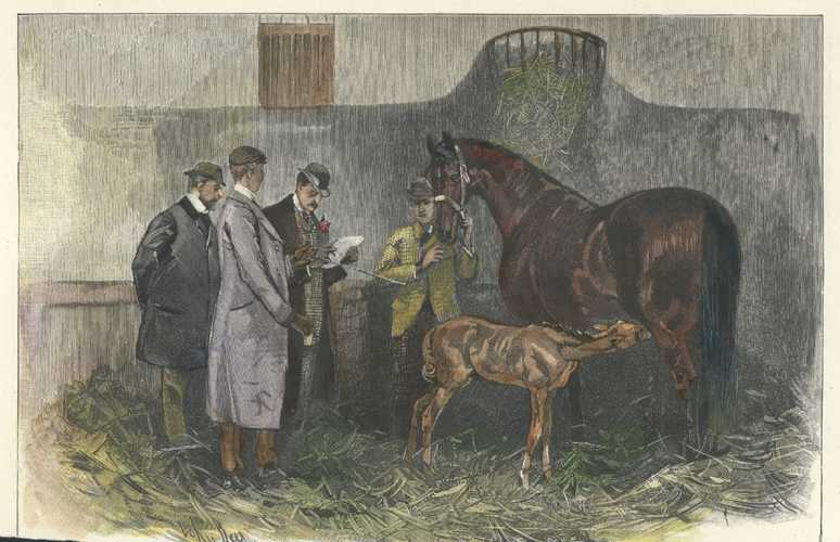 Racehorse-breeding. Lord Rosslyn in his stables. Engraving c1892.