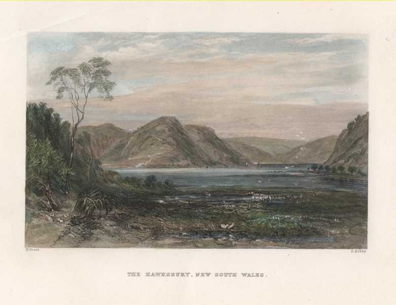 Discounted: The Hawkesbury, New South Wales. Prout, c1874.
