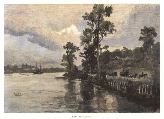Hamilton Reach, Brisbane & Kingsford Smith Drive, c1886