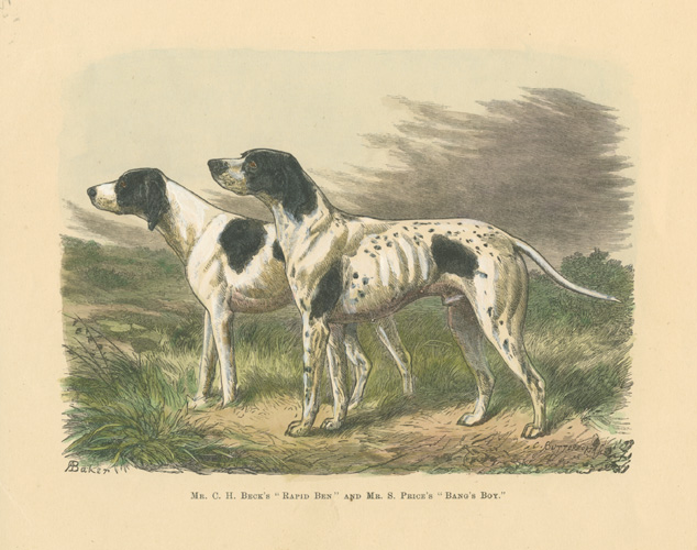 "Mr.C.H.Beck's ""Rapid Ben"" and Mr.S.Price's ""Bang's Boy"" c1878."