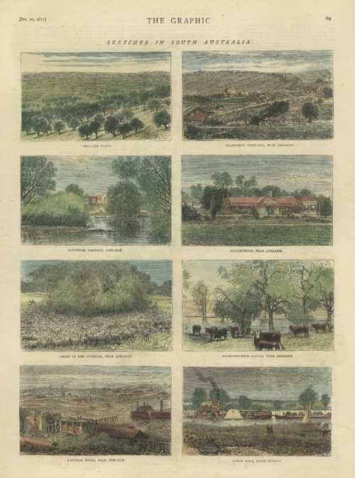 Sketches in South Australia. Adelaide, Clarendon vineyard, Collingrove, Kapunda.. c1877