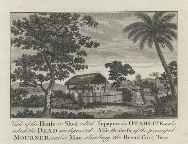 Tahiti. Tupapow in Otaheite. Mourner. Bread-fruit Tree. Cook engraving c1780.