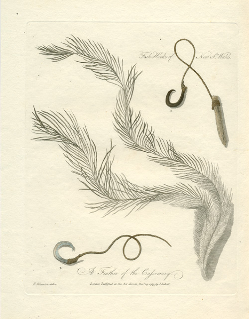 A Feather of the Cassowary. Aboriginal Fish Hooks c1789