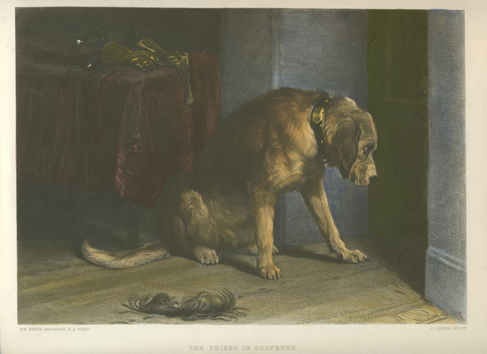 The Friend in Suspense, Landseer dog portrait. Engraved c1878.