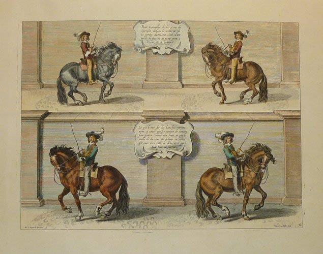 Diepenbeke Horsemanship. Lovely hand-coloured reproduction print.