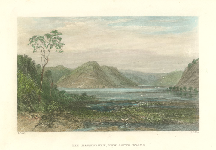 Fine antique print of The Hawkesbury, NSW. Prout c1874.