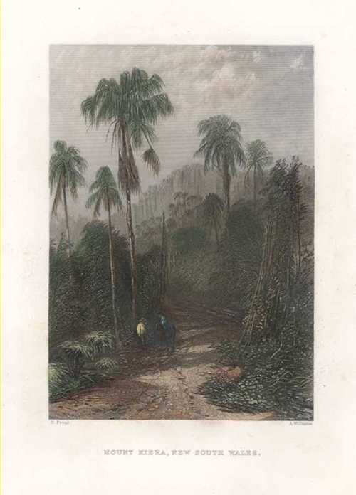 Mount Kiera, New South Wales engraving. Skinner Prout c1874.