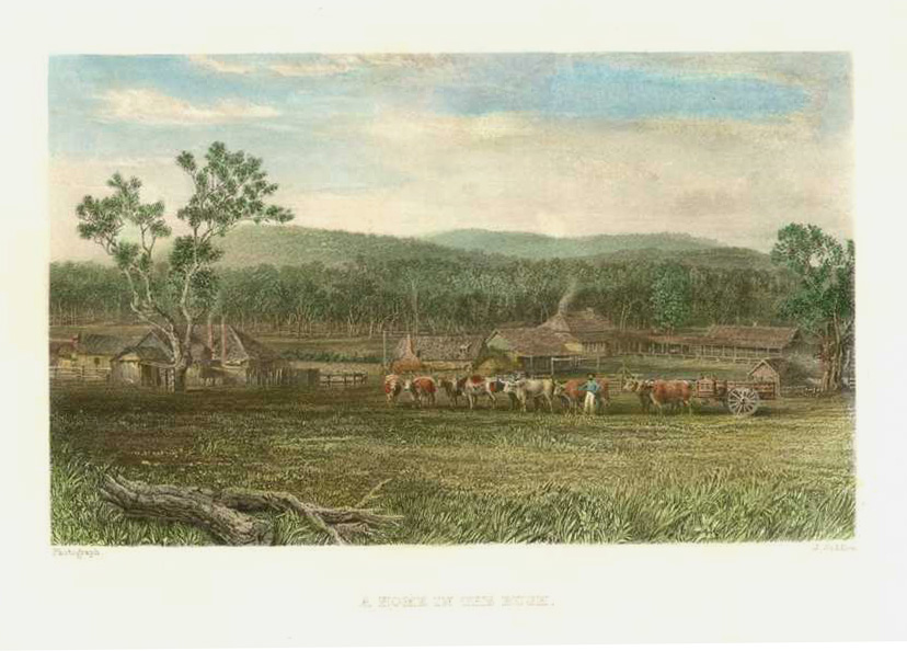 A Home in the Bush. Early settlers in Australia. c1874