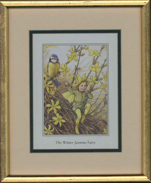 Small framed Flower Fairy. Jasmine Fairy with Wren.