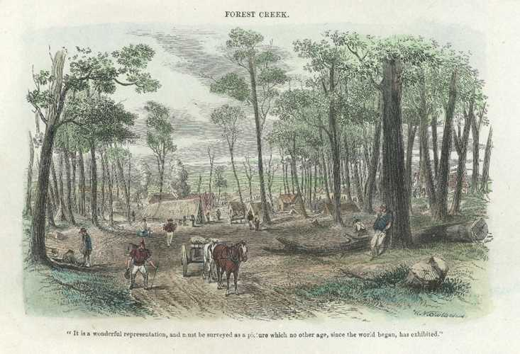 Australian Gold Rush at Forest Creek, Victoria. Sherer antique print c1853.
