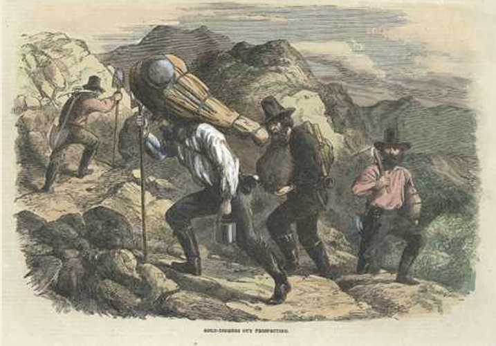 Gold-Diggers out Prospecting. Illustrated London News engraving. c1863.