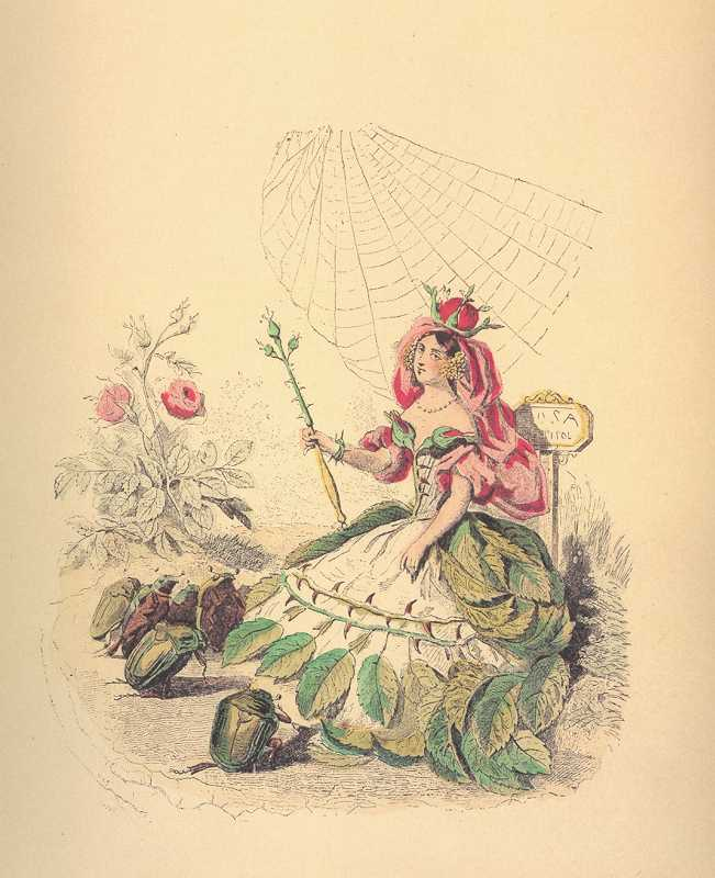 Grandville Rose Flower-Lady. Rose Queen with beetle subjects.
