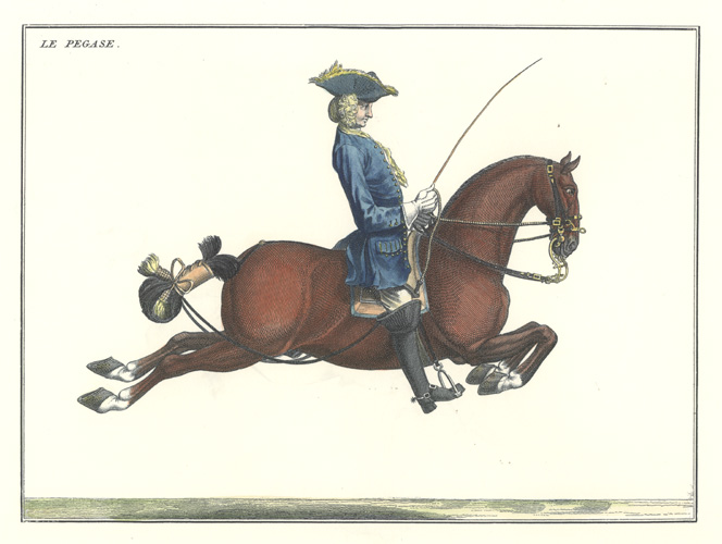 "18th century dressage illustration. ""Le Pegase"". Baron Eisenberg."