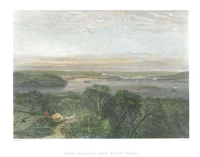 Port Jackson, New South Wales. Sydney Harbour Australia. Antique Print c1874