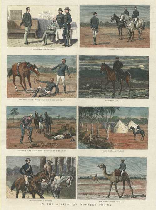 Australian Mounted Police on horse and camel. Graphic c1889